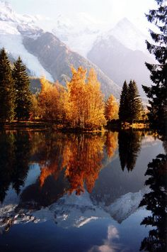 Fall in Lake Gaillands, France