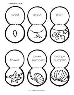 10 Best Pumpkin worksheets/activities/lessons/study units