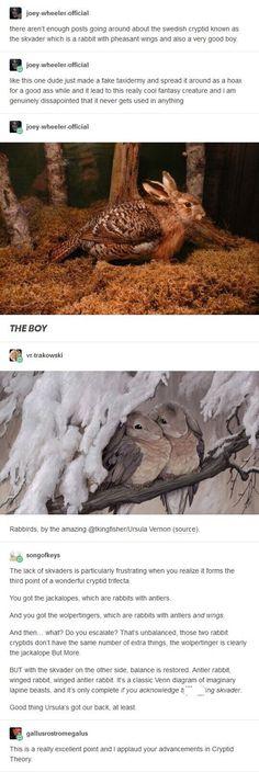 124 Best Pooka Stuff Images Mythical Creatures Mythological