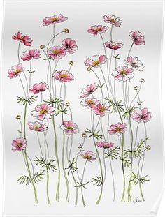 'Pink Cosmos Flowers' Art Print by JRoseDesign Watercolor Flowers, Watercolor Paintings, Watercolours, Cosmos Flowers, Watercolor Projects, Flower Doodles, Canvas Prints, Art Prints, Watercolor Illustration