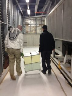 :-) Mar and Todd walking a hive outside to their new home on the rooftop of Hotel Realm