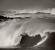 ed freeman surf - Google Search