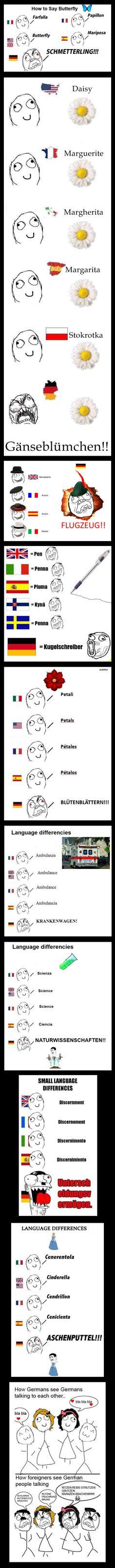 Piccole differenze nei linguaggi