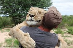 Friends for life: The story of the abandoned lion cub Sirga who was raised by a German wildlife enthusiast in his 20s was one of the most shared stories on social media last year