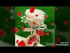 Lovely video for all my channel viewers with nice inspirational. Good Morning Romantic, Cute Good Morning, Good Morning Flowers, Good Morning Friends, Birthday Wishes For Boyfriend, Best Birthday Wishes, Birthday Songs, Happy Birthday Quotes, Morning Greetings Quotes