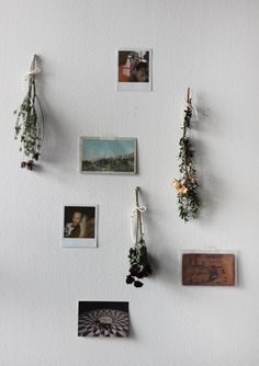 DIY wall decor with dried flowers