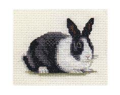 Gallery.ru / Фото #38 - Зайки - rabbit17
