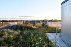 Urbio « Landscape Architecture Platform | Landezine Landscape Architecture, Rooftop, Terrace, Mansions, House Styles, Landscaping, Gardens, Landscape, Balcony