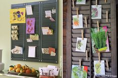 New Uses for Old Things: Shutter Makeovers- In the home, or for the garden :)