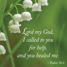 Psalm 30:2 #BibleVerse