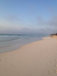 nobody on the beach this morning !