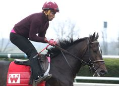 McCraken (Ghostzapper), the narrow 5.90-1 favorite in the final GI Kentucky Derby future wager that closed Sunday, faces six formidable foes in Saturday's $1-million GII Blue Grass S. at Keeneland. The undefeated 'TDN Rising Star' …