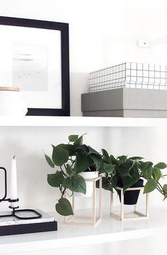 "createforless: ""DIY Mini Plant Stands via Homey Oh My """