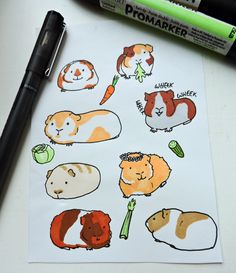 Cute+guinea+pig+stickers+to+decorate+scrapbooks,+diaries+laptops+and+more. Please+do+not+decorate+your+guinea+pigs+with+guinea+pig+stickers. Each+sticker+is+completely+hand+drawn+and+coloured+so+if+you+would+like+a+piggy+in+a+particular+colour/pattern+pl