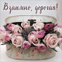 Picture Cards, Good Morning Images, Happy Day, Beautiful Pictures, Floral Wreath, Happy Birthday, Thankful, Tableware, Holiday