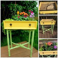 DIY Drawer Garden Planter