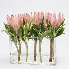 protea flower arrangements