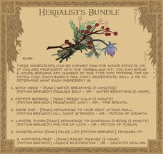 Equipment cards for DnD / Pathfinder Herbalist's bundle - A small cluster of magically potent Flora and fungi. Often found in the hands of potion makers and healers of all kinds. Dungeons And Dragons Homebrew, D&d Dungeons And Dragons, Dnd Druid, Dnd Stats, Pen & Paper, Dnd Dragons, Dungeon Master's Guide, Dnd 5e Homebrew, Dnd Monsters