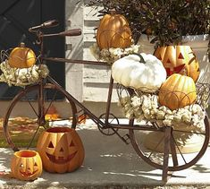 Pottery Barn's bicycle planter in fall (cute but $249 seems like alot!!)
