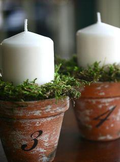 pinterest spring decorating ideas | 37 Cool Spring Moss Outdoor And Indoor Décor Ideas | DigsDigs