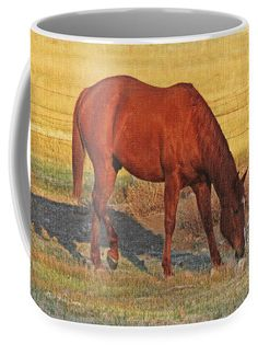 Horse In The Field Coffee Mug featuring the photograph Horse In The Field by Tom Janca