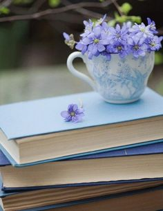 Cups, books, and flowers. It doesn't get much better than that!