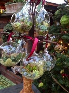 Living ornaments!