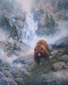 - Wildlife Art Journal  art brown bear. pine tree mountain. john potter.   canada