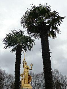 Athéna et palmiers chanvres  http://www.pariscotejardin.fr/2012/12/athena-et-palmiers-chanvres/
