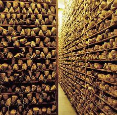 Le sous-sol de John Lobb en Angleterre qui possède plus de 12000 formes. Ou bien est-ce une pièce de la maison Crèvecoeur ?http://bitly.com/1GNUOBX
