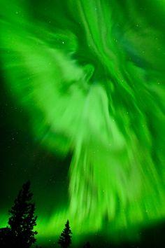 Northern Lights - Clear Lake, Riding Mountain National Park, Manitoba, Canada