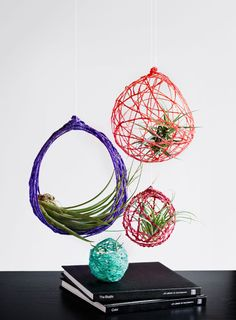 Air Nest air plant holder terrarium hanging by biggerthanlittle