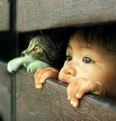 Cute kids and cats- 26 pics Animals For Kids, Animals And Pets, Baby Animals, Funny Animals, Cute Animals, Animals Planet, Animal Pictures, Cute Pictures, Tier Fotos