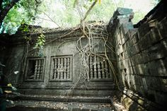 away from Angkor lies one of the region's most mysterious and beautiful temples, Beng Mealea. Angkor, Temples, Mysterious, Cambodia, Explore, Adventure, World, Beautiful, The World