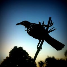Check out these beautiful birds. http://metalbird.myshopify.com/products/tui#