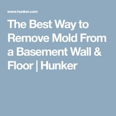 The Best Way to Remove Mold From a Basement Wall & Floor   Hunker