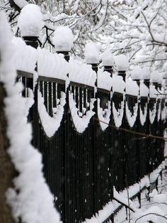 Charming Photos of Winter Scenery - Sortrature I Love Snow, Winter Love, Winter Snow, Winter White, Winter Christmas, Winter Walk, Winter Colors, Christmas Carol, Christmas Themes