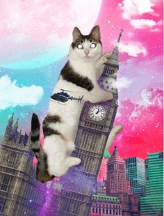 cat, meow, catzilla, city, laser eye, helicopter, london, sky, moon