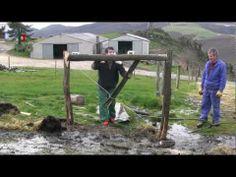 Construcción de cercas para el ganado - YouTube