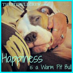 Happiness is a warm Pit Bull :-)  THEPITBULLCREW.com