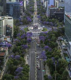 Mexico City Df Mexico, Cancun Mexico, Earth View, Holidays To Mexico, México City, City Photography, City Buildings, Mexico Travel, Perfect Place