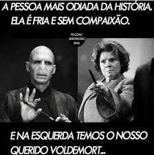 best Ideas for memes harry potter portugues Harry Potter Tumblr, Harry Potter Film, Memes Do Harry Potter, Harry Potter Wizard, Harry Potter Pictures, Potter Facts, Harry Potter Characters, Voldemort, Hogwarts