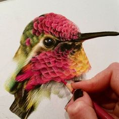 """8,637 Likes, 42 Comments - Epic Art Posted Daily (@art_worldly) on Instagram: """"Art by @sarahstribblingwildlifeart"""""""