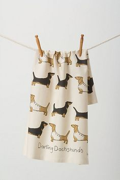 Sweet Dachshunds Dishtowel #anthropologie    My sweet daughter-in-law and son gave me this for my birthday!