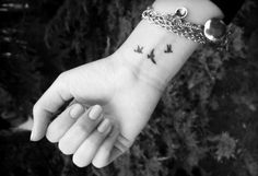 three little birds?..Maybe? can stand for my 3 little boys or my favorite inspiring bob marley song.