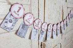 This listing is for an adorable monthly banner. This is a great way to celebrate your baby's first year. Each circle measures 5 1/4‰ and is made from two layers of cardstock with printed lettering. T