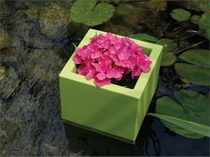 Cubotti Outdoor Planters by Serralunga. Furnishing accessory for contemporary settings. Cubic pot, basic shape with micro- dotted surface, suitable for decorating modern and refined locations. This pot is lifted slightly from the ground and can be used for direct potting (as a cachepot) or for hydroponics.