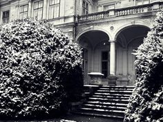 Winter castle in Szabadkígyós photography
