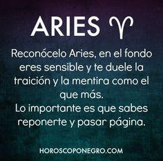 900 Ideas De Aries Signos Del Horoscopo Signos Del Zodiaco Signos Zodiacales
