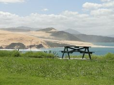 Picnic table near Omapere NZ - a great spot for lunch New Zealand North, New Zealand Travel, Picnic Spot, Picnic Table, Outdoor Tables, Outdoor Decor, Picnics, More Photos, Cousins